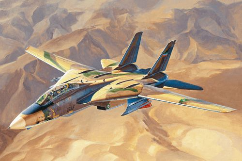 "Hobby Boss 1/48 ""Persian Cat"" F-14A Tomcat-IRIAF"